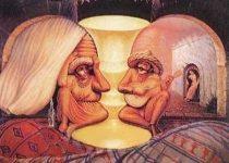 ilusiones opticas celulares