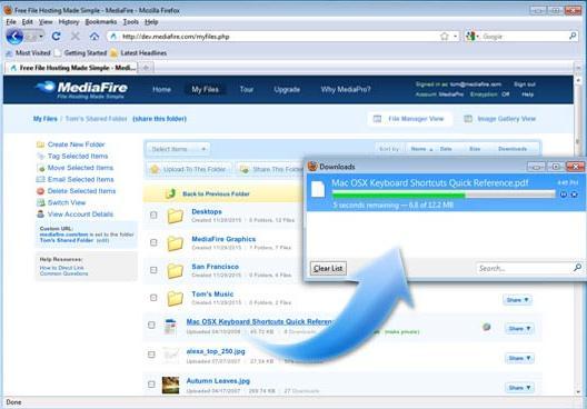 rapidshare megaupload usuario premium