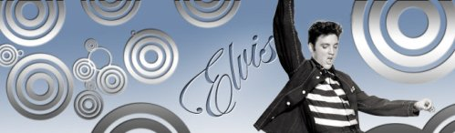 Fondo Elvis MSN