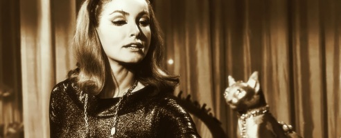 julie-newmar fondos retro catwoman