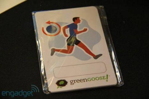 goose-green