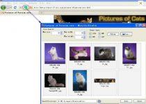 descargar imagenes en masa