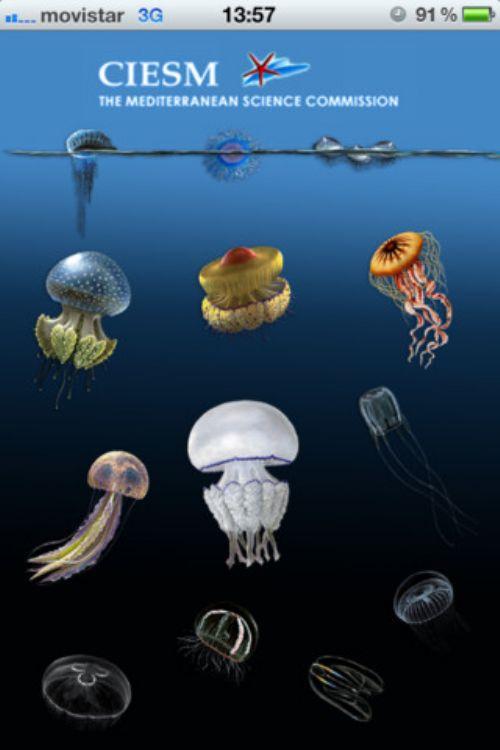 aplicacion medusas