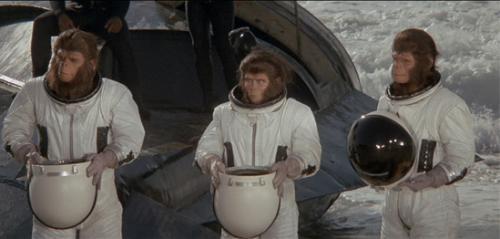 Mira como empezó la era de los simios en la tierra