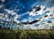 Los mejores fondos e impresionantes de paisajes naturales y de alta calidad
