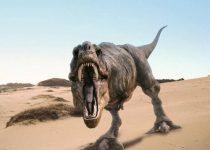 Una tremenda boca de Tiranosaurio Rex en tu escritorio