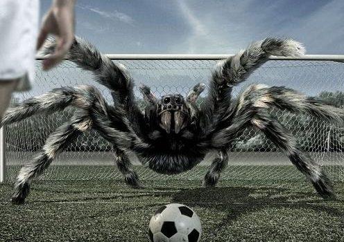 Fondo fantástico de un portero araña