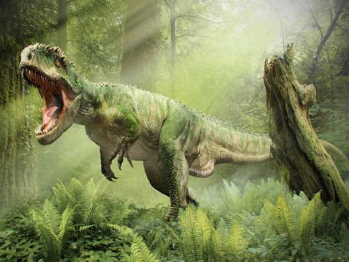 Fondo de un Tiranosaurio rex