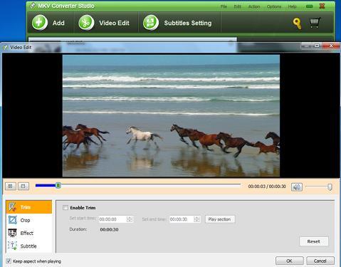 MKV Converter Studio: Convertidor MKV Profesional para convertir archivos MKV a AVI, MP4, WMV.