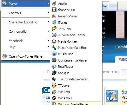 FoxyTunes for Internet Explorer
