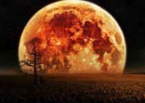 Buenos fondos de alta calidad luna